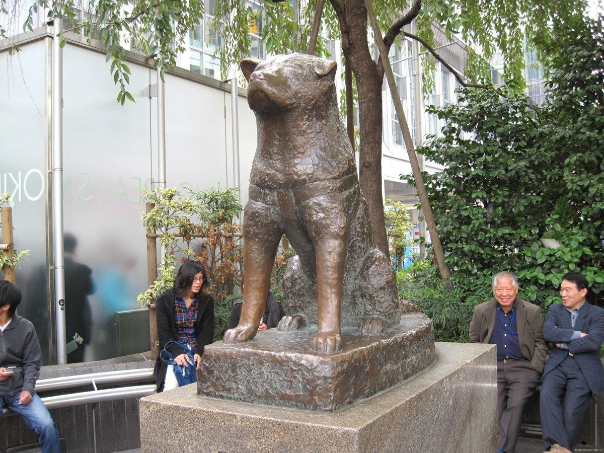 Знаменитые памятники животным (12 фото)