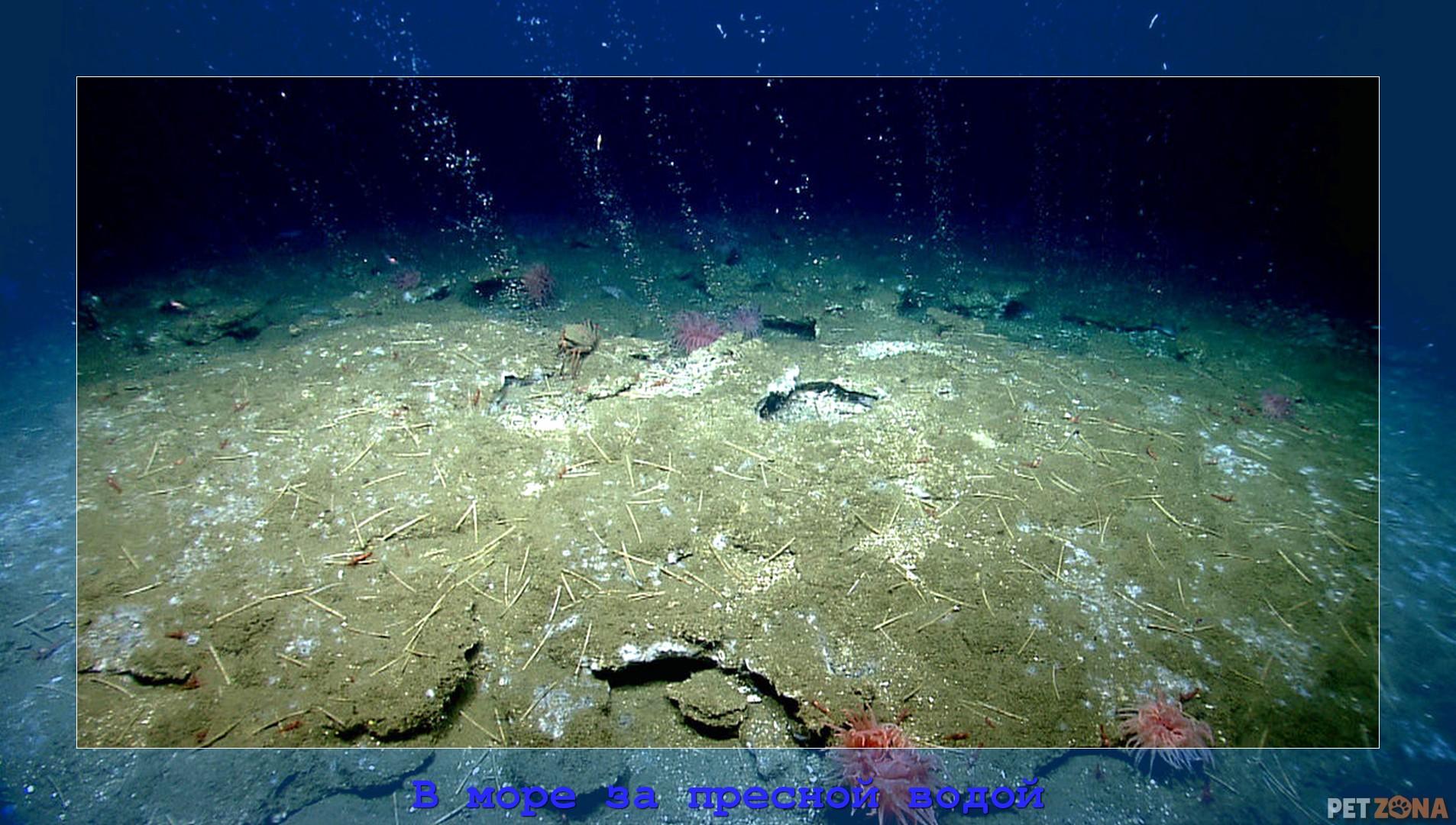В открытое море за пресной водой