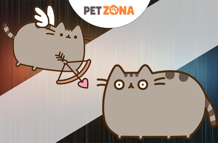 Причины ожирения кошек