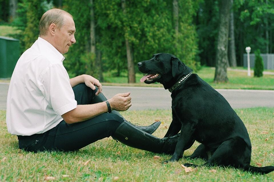 Питомцы В.В. Путина
