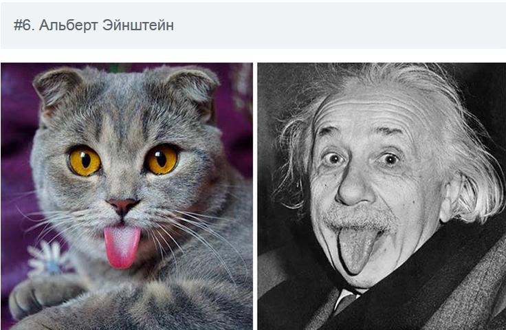 На каких животных похожи знаменитости? (10 забавных фото)