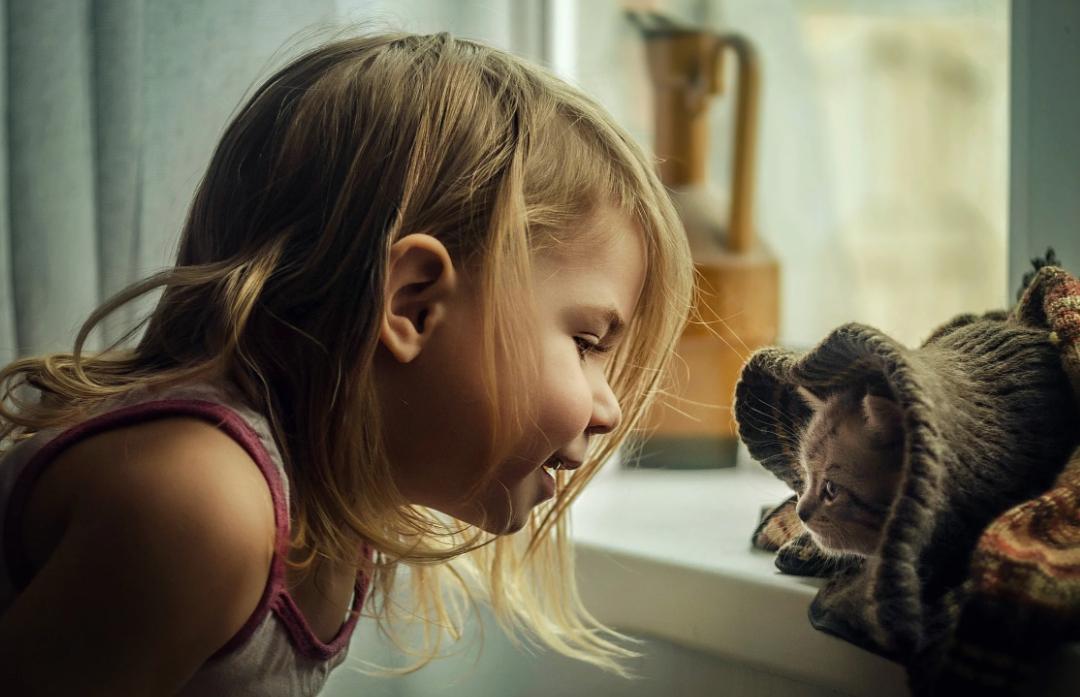 """""""Раки и котятки, тельцы и потеряшки"""". 5 зодиаков, которые без ума от животных"""