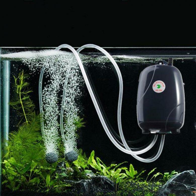 Аэрация воды в аквариуме: что следует знать о компрессорах